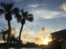 Orange sunset and palm trees on an island Royalty Free Stock Images