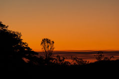 Orange sunset. Orange sky at sunset with trees in silhouette Royalty Free Stock Images