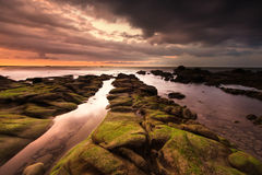 Orange sunset with storm cloud with beautiful mossy rock  foreground Royalty Free Stock Photo