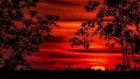 Orange Sunset Timelapse 4k. Timelapse of a sunset. 4k footage stock video