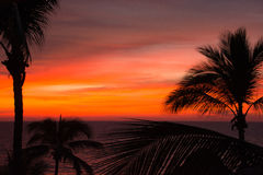 Orange sunset in a tropical paradise Royalty Free Stock Images