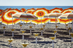 Orange sunshades Royalty Free Stock Image