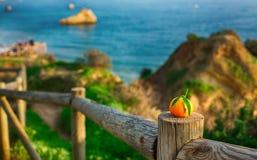 Orange sur une barrière en bois par l'océan Photo libre de droits