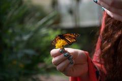 Orange svartvit fjäril med öppna vingar på en blomma i en dams hand royaltyfri bild
