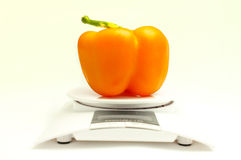 Orange sweet pepper Stock Photography