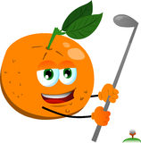 Orange swinging his golf club Stock Images