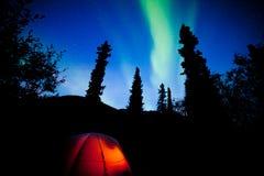 Orange taiga tent glow under northern lights flare Stock Photos