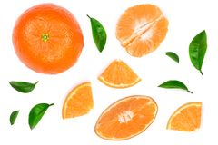 Orange or tangerine with leaves isolated on white background. Flat lay, top view. Fruit composition Royalty Free Stock Photography