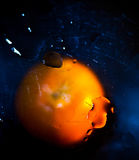 Orange tangerine. Orange mandarin lies under the glass. On the glass are water droplets Stock Image