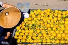 Orange tangerine on sale Royalty Free Stock Image