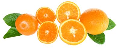 Orange and tangerine slices. Stock Images