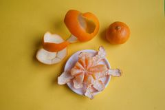 Citrus fruits on a yellow background Royalty Free Stock Image