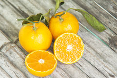 Orange or tangerine Royalty Free Stock Photos