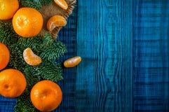 Orange Tangerinen mit Tannenzweigen Lizenzfreie Stockfotos