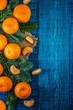 Orange Tangerinen mit Tannenzweigen Lizenzfreies Stockfoto