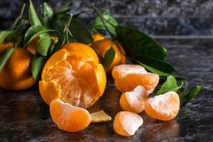 Orange tangerines with green leaves on dark background. Peeled mandarin slices. Many orange tangerines with green leaves on dark background. Peeled mandarin stock photos