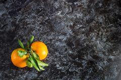 orange tangerines with green leaves on dark background. Top view and copy space stock photos