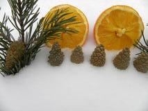 Orange Tannenzweige mit Schneejahr Stockfotografie