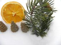 Orange Tannenzweige mit Schneejahr Stockfotos
