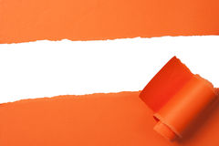 Orange teared paper with copy space Royalty Free Stock Photography
