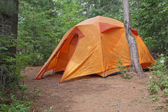 Orange Tent in Algonquin Royalty Free Stock Image