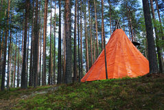 Orange tent in a pine forest Stock Photography