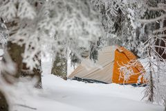 Orange tent in winter forest Royalty Free Stock Photos