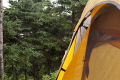 Orange tent in the woods Royalty Free Stock Photo