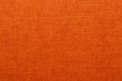 orange textur Closeup av en ljus s royaltyfri foto
