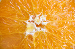 Orange texture. Ideal light background Stock Photography