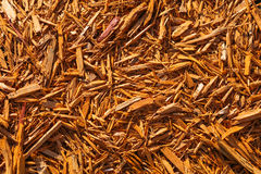 Orange texture of wood chips Royalty Free Stock Photos