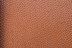 Orange Textured. Leather texture on the entire frame Royalty Free Stock Photos