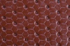 Orange Textured. Leather texture on the entire frame Stock Photos
