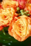 Orange thai roses 013. Bunch of fresh orange roses royalty free stock image