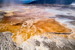 Orange thermal pools at Upper Terrace of Mammoth Hot Springs Royalty Free Stock Photos