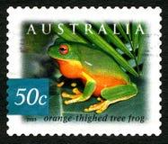 Orange Thighed Tree Frog Australian Postage Stamp Stock Image
