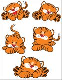 Orange Tiger Lizenzfreie Stockfotos