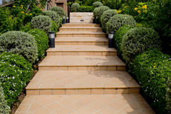 Orange Tiles Stair Steps Leading up to house with small trees. Royalty Free Stock Photos