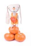 Orange time! Royalty Free Stock Photos