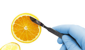 Orange on the tip of a scalpel. concept of medicine, healthy Eat. Ing. Photo Royalty Free Stock Photos