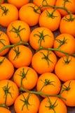 Orange Tomaten für Verkauf bei einem Farmer& x27; s-Markt Stockfotografie