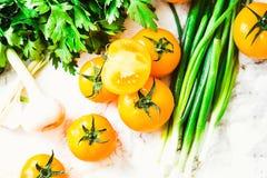 Orange tomater, saftiga sommargrönsaker och gräsplaner, bästa sikt Arkivbilder