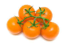 Orange tomatoes in drops of water on a white background Stock Image