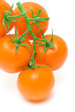 Orange tomatoes in water drops on a white background close-up Royalty Free Stock Images