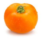 orange tomatoes Royalty Free Stock Image
