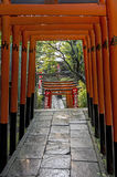 Orange torii Stock Photos