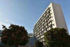 Orange träd mellan vanliga byggnader av bostads- byggnader och ginnasiumkupolen royaltyfri bild