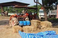 Orange tractor in a farm Stock Image