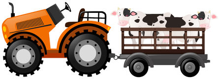 Orange tractor with two cows on wagon. Illustration Stock Photos