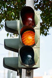 Orange traffic light. Orange traffic light with tree background Stock Images